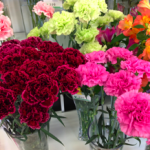 6 Popular Mother's Day Gifts for Your Japanese Girlfriend's Mom